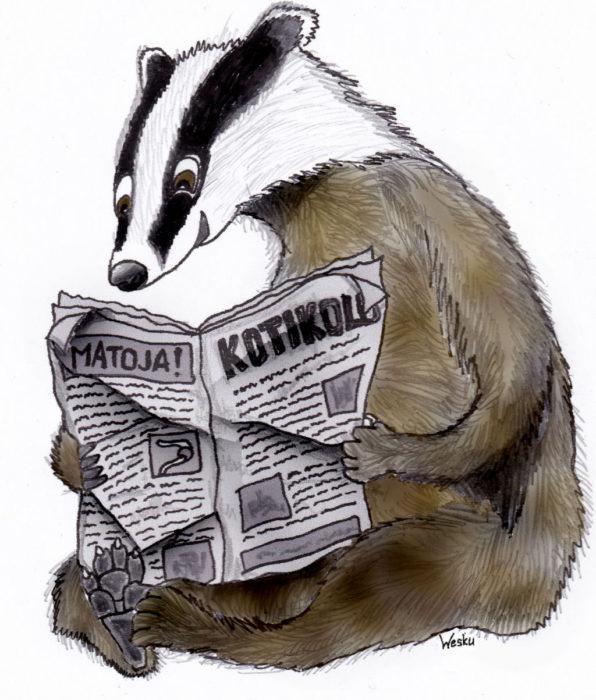 Piirroskuva sanomalehteä lukevasta mäyrästä.