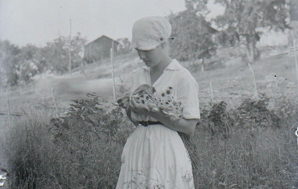Mustavalkoinen kuva kukkia pitelevästä maalaistytöstä niityllä.
